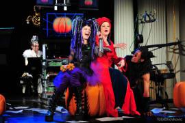 Otkazuje se izvedba predstave <em>Vještica Hillary ide u operu </em>
