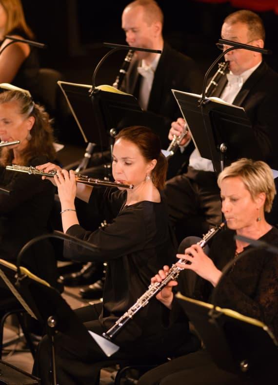 Izvedena <em>Deveta simfonija</em> Ludwiga van Beethovena 14