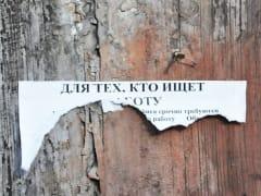 В России продлили упрощенный порядок регистрации безработных