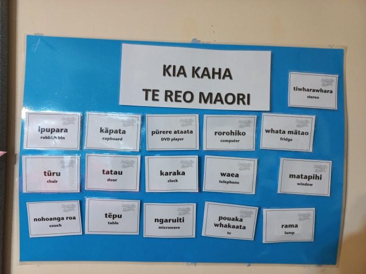 Photo of gitesh   Maori Language Moment 2021