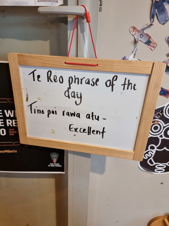 Photo of Ali | Maori Language Moment 2021