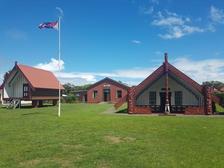 Photo of Haylee | Maori Language Moment 2021