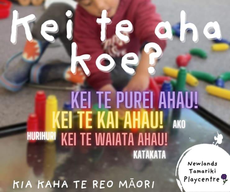 Photo of Newlands Tamariki | Maori Language Moment 2021