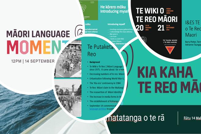 Photo of Adrianne | Maori Language Moment 2021
