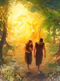 Изгнанники рая