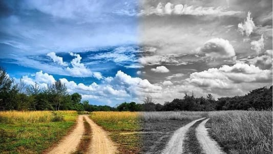 Разные дороги