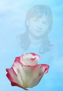 Шипы роз