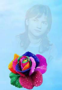 Роза поэта