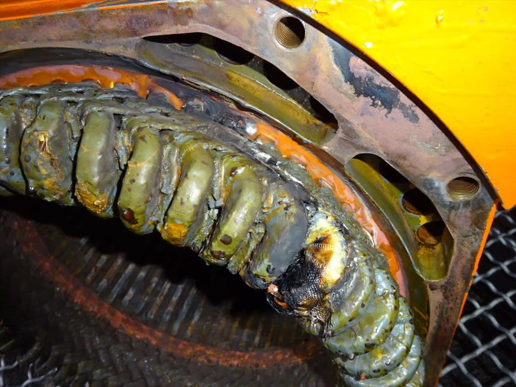 4-electric-motor-cleaning-after-close-up