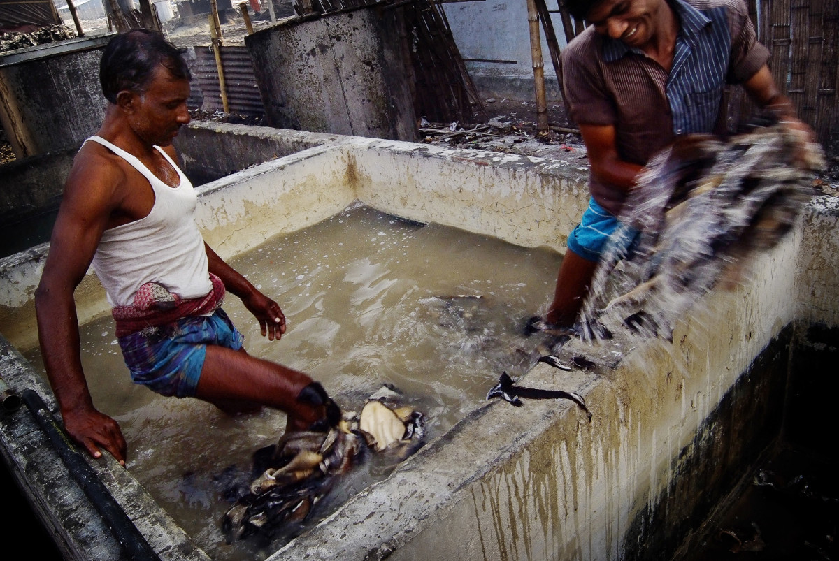 Tannery Workers in Tanning Pit