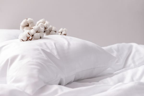 taille oreiller