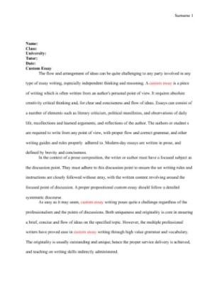 Articles on essay writing services