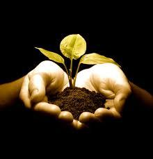 Faith As a Seed