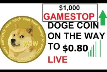 Elon Musk HODL DOGE COIN on the way to 80 CENTS DOGECOIN