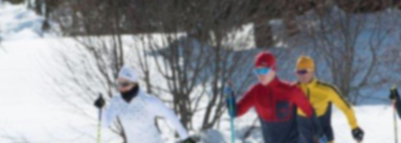 Nordic Days mit einem Langlaufguide