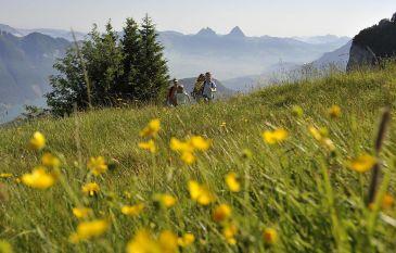 Wandergenuss im Herzen der Schweiz - Seehotel Wilerbad
