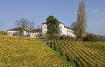 Temps libre dans les vignobles de la ville de Zurich