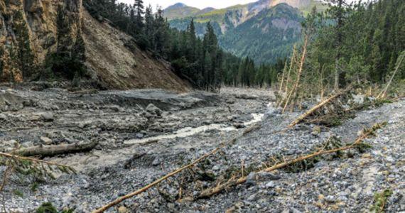 Naturama-Vortrag: Was Bäume von Naturkatastrophen erzählen