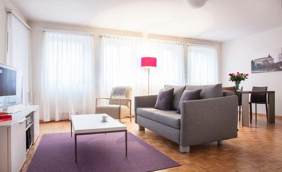 1 Zimmer Apartment, Parterre, 50 m²