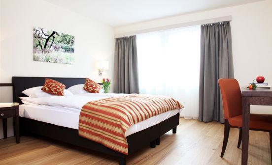 2.5-Zimmer Apartment, Parterre, 54 m²