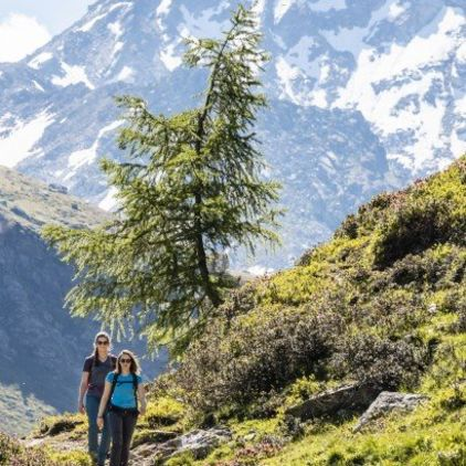 Pure hiking pleasure in Davos Klosters