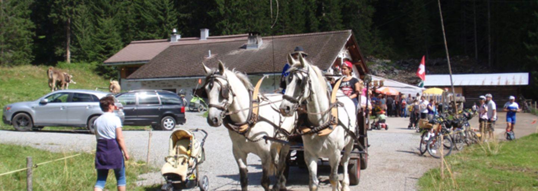 Alpfest Novai, Klosters