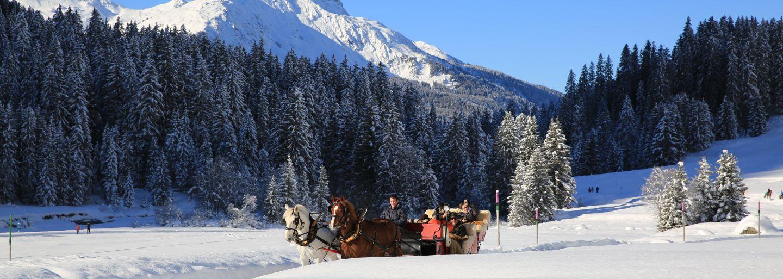Kutschenfahrt in der verschneiten Landschaft von Klosters