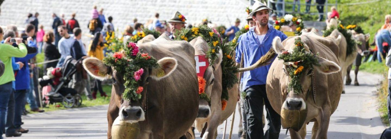 Prättigauer Alp Spektakel