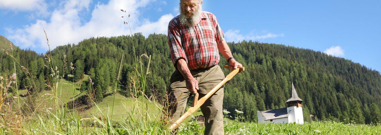 Besuch bei den Bauern auf der Alp