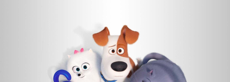 Kinderfilm Klosters: Pets II