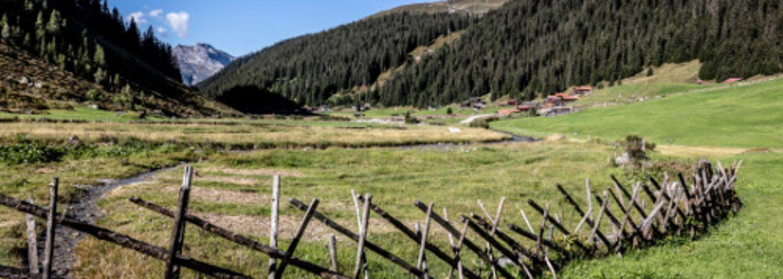 800 years anniversary Klosters 2022: Walsertag