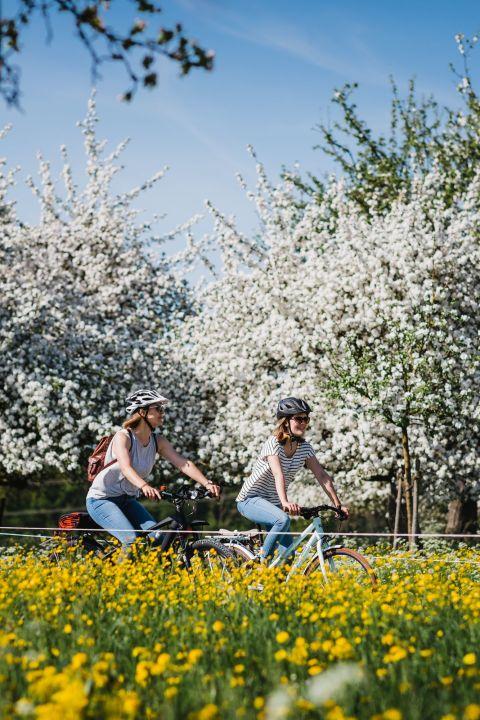 TCS - Erlebnis Ostschweiz mit E-Bike!