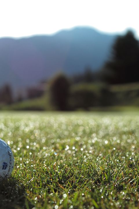 Grisons Golf Safari