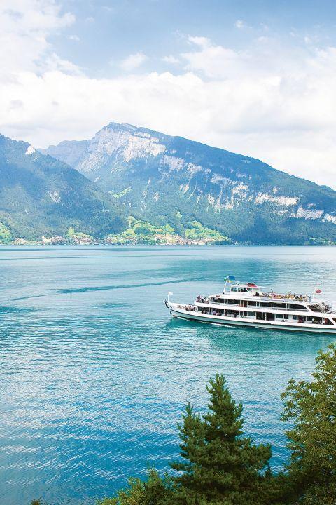 Best of Oberland bernois