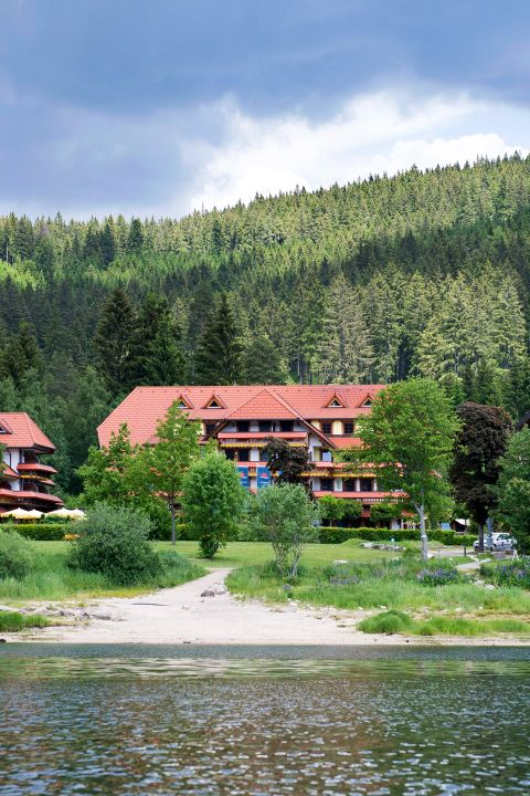 Hiking and biking by the lakeside - Wellnesshotel Auerhahn