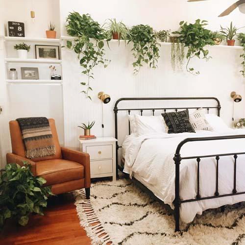 Monday green inspo le piante per la camera da letto for Mensola sopra letto