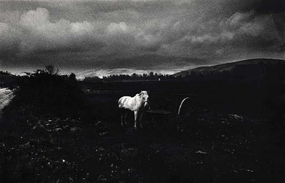 """Photo d'une exposition collective de l'oeuvre de Gabriel Cualladó, intitulée """"Photographie actuelle en Espagne"""", Circulo de Bellas Artes"""