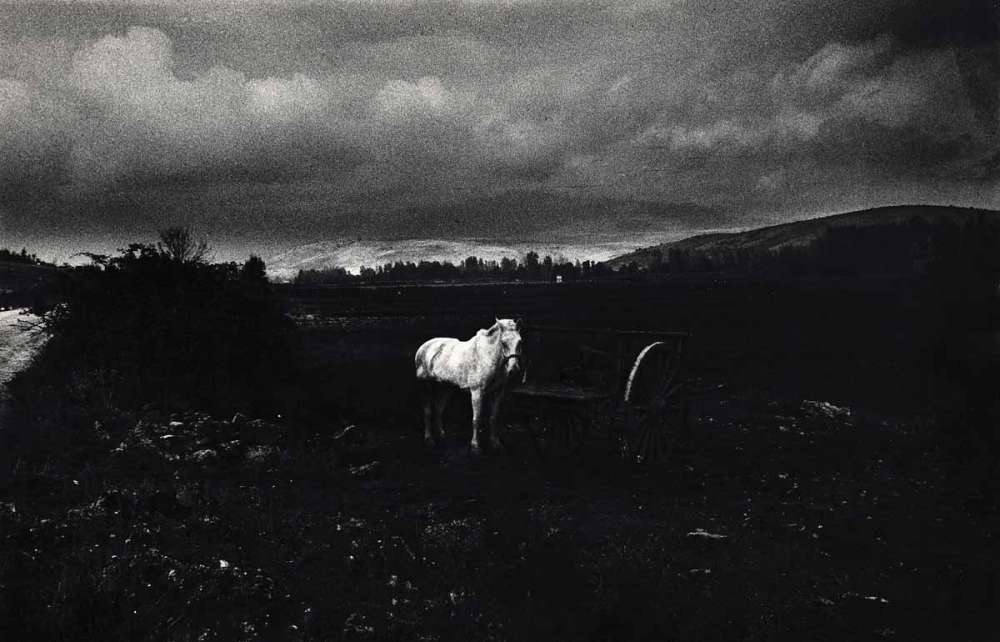 Photo of an collective exhibition of Gabriel Cualladó's work, entitled Photography today in Spain, Circulo de Bellas Artes