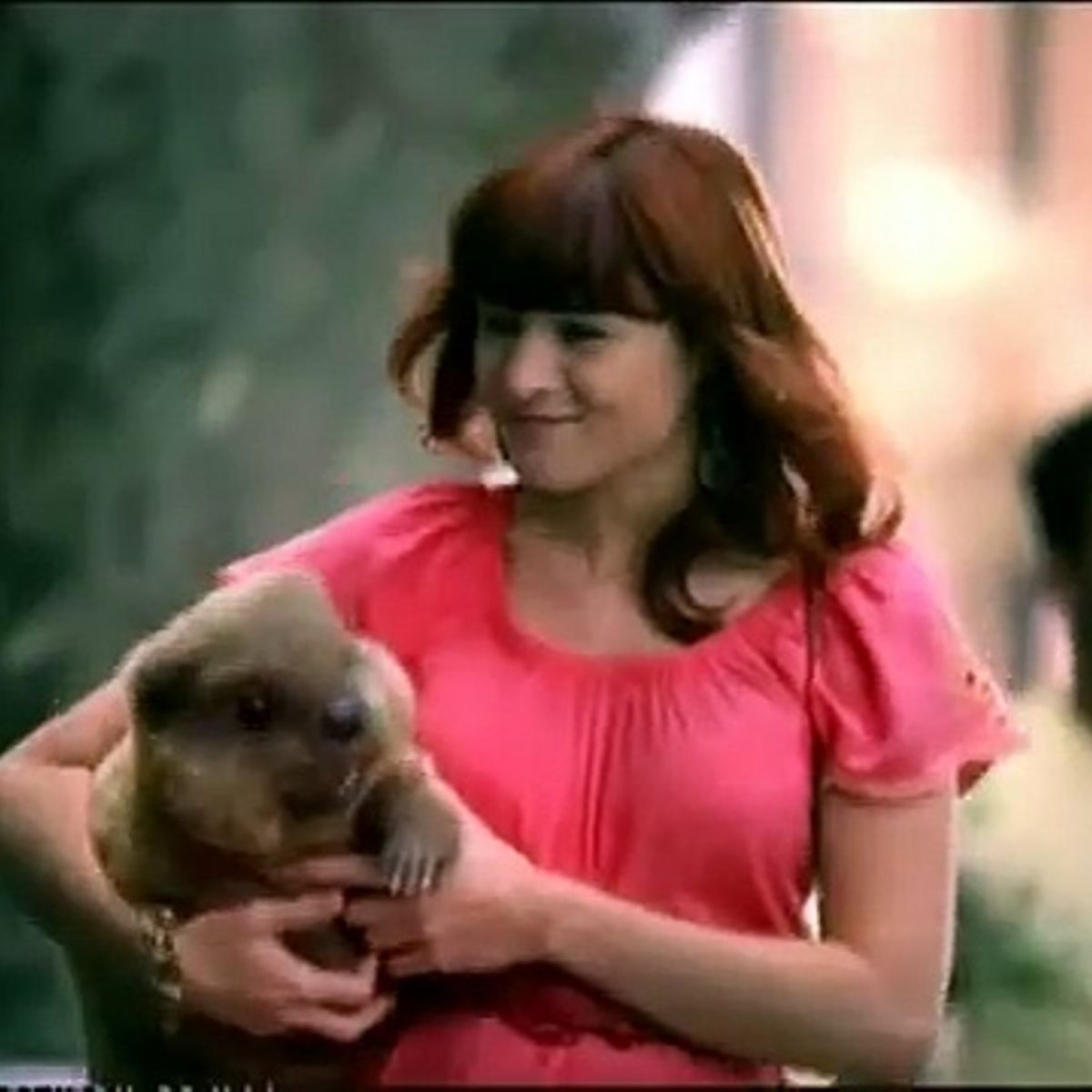 Beaver with woman: Kotex advertisement tampon