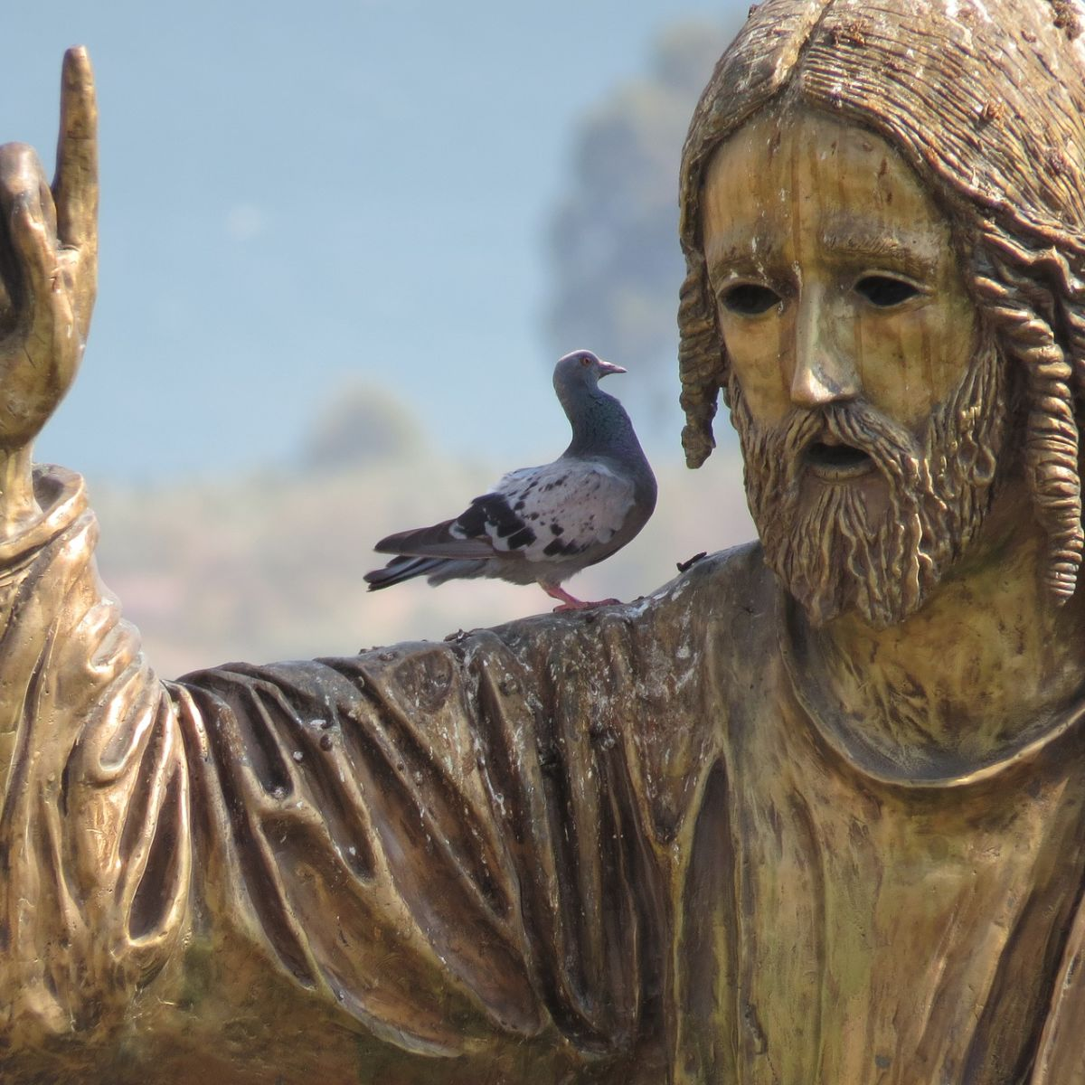 Jesus Christ teaching a bird