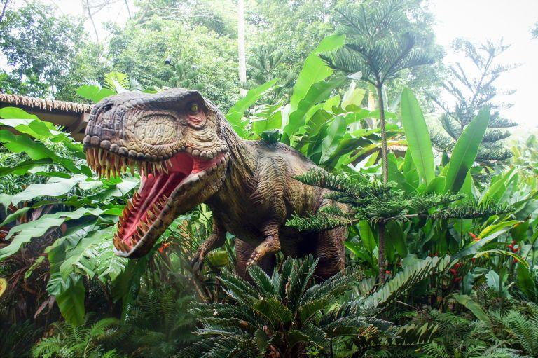 Dinosaur, dino, tyrannosaurus rex