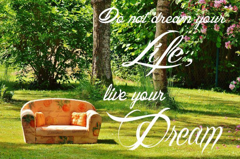 Do not dream your life, live your dream.