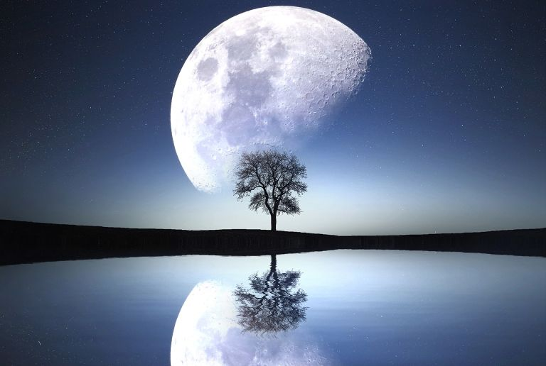 Moon and tree reflecting in water
