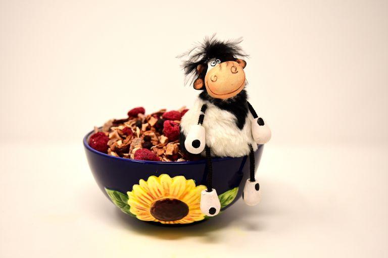 Muesli, müesli, bowl, cereals, cow, figure, funny