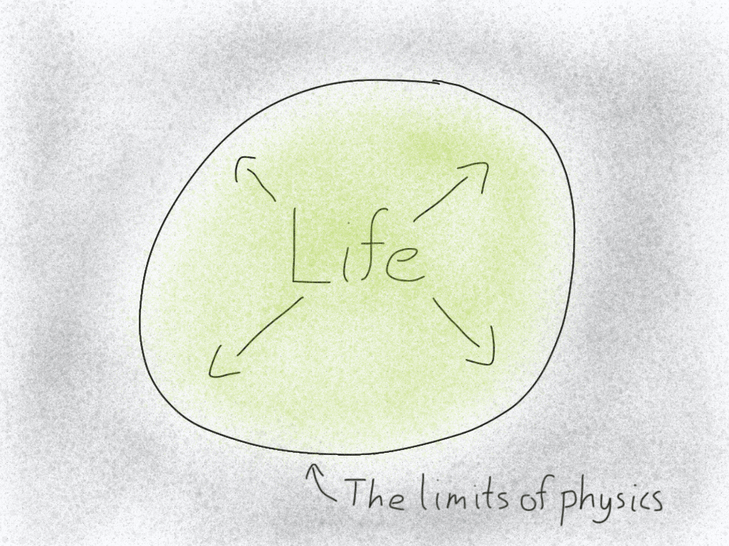 Diagram of the limits of life.