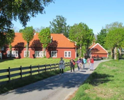 Svanoy hovedgård