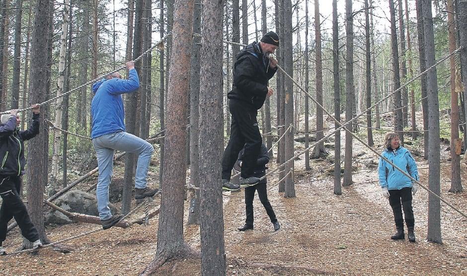 Naturklatrejungelen er en populær aktivitet, Nordland Fylke