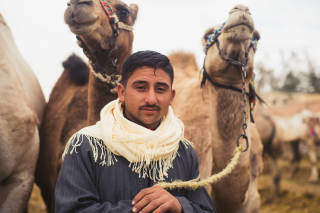 Portrait of man with camels
