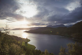 Loch view from treetops