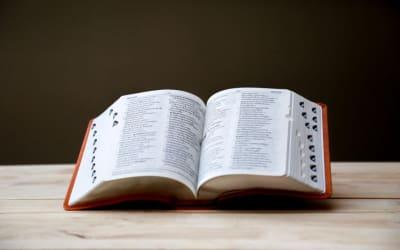 Terminologický slovník a glosář – k čemu se hodí?